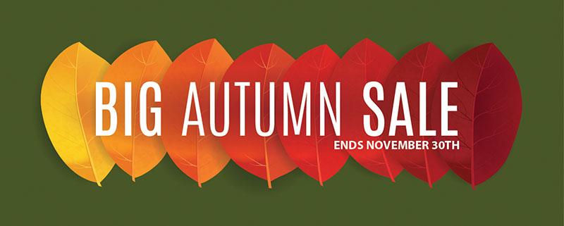American Cart's Big Autumn Sale!
